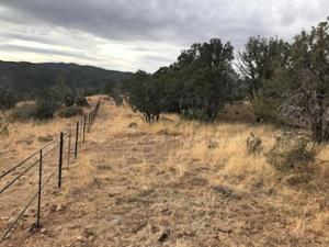 # 457 southern section of pipe rail fence