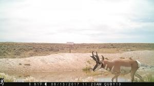 Pennock Camera 048