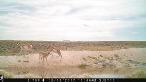Pennock Camera 053