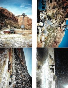 #280 Summit Canyon Water Development (CO)