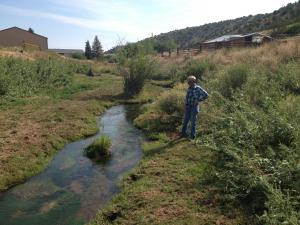 #405 Willow Creek Water Quality Improvement (WY)