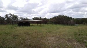 #419 Kerr Wildlife Management Area Guzzlers (TX)