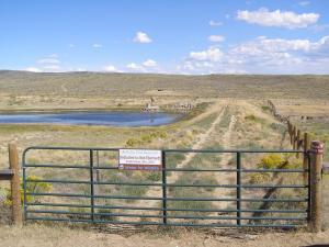 #415 Dry Cow Reservoir Riparian Habitat Improvement (WY)