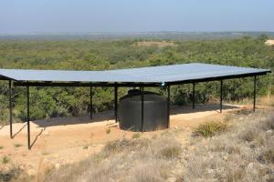 #412 Mason Mountain Wildlife Management Area Guzzler (TX)