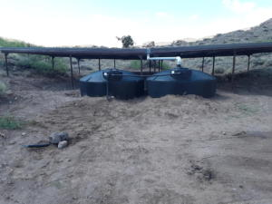 San Lorenzo Wildlife Water (7)